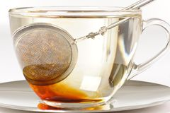 Healthy red bush tea from South Africa Stock Photos