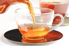 Healthy red bush tea from South Africa Stock Image