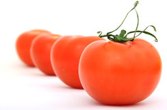 Healthy red cherry tomato with green stalk Royalty Free Stock Images