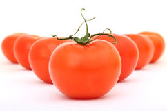 Healthy red cherry tomatoes with green stalk stock photos