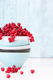 Healthy red currants. Arrangement of bowls with fresh red currants Stock Photos