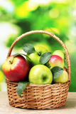 Healthy ripe apples in the bascet Royalty Free Stock Photos