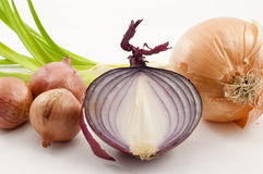Healthy Root Onions Royalty Free Stock Photo