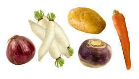 Healthy root vegetables Royalty Free Stock Images