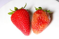 Healthy and rotten spoiled bad red strawberries Royalty Free Stock Photos