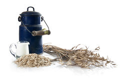 Healthy rural breakfast. Beautiful old ewer, wheat and milk on white background Stock Photography