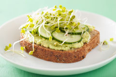 Healthy rye bread with avocado cucumber radish sprouts Royalty Free Stock Image