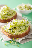 Healthy rye bread with avocado cucumber radish sprouts Stock Photos