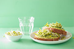 Healthy rye bread with avocado cucumber radish sprouts Royalty Free Stock Photos