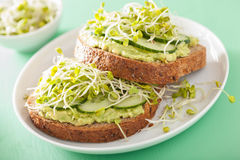 Healthy rye bread with avocado cucumber radish sprouts Royalty Free Stock Images