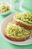 Healthy rye bread with avocado cucumber radish sprouts Stock Image