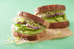 Healthy rye sandwich with avocado cucumber alfalfa sprouts.  Stock Image