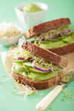 Healthy rye sandwich with avocado cucumber alfalfa sprouts Royalty Free Stock Images