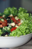 Healthy Salad Stock Photography