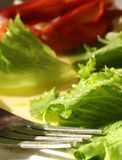Healthy salad. Green salad with a fork stock photography