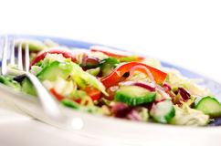 Healthy salad. Pepper, cucumber, cabbage, radish on a plate Royalty Free Stock Photography