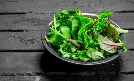 Healthy salad. Arugula salad in a bowl. On a black rustic background stock image