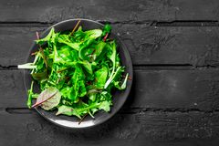 Healthy salad. Arugula salad in a bowl. On a black rustic background royalty free stock photos