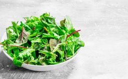 Healthy salad. Arugula salad in a bowl. On a rustic background royalty free stock images