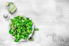 Healthy salad. Arugula salad in a bowl. On a rustic background stock photography