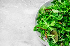 Healthy salad. Arugula salad in a bowl. On a rustic background royalty free stock photography