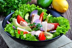 Healthy salad of avocado, tomatoes, canned tuna, onions and lettuce with parmesan, parsley and olive oil Stock Images