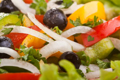 Healthy salad with black olives. Close-up texture of healthy salad with black olives Stock Photos