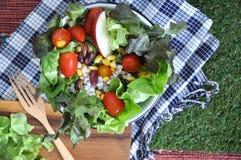 Healthy salad bowl Royalty Free Stock Photos