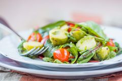 Healthy salad with brussels sprouts cabbage , tomatoes, salad Royalty Free Stock Photography