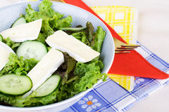 Healthy salad with camembert. stock photo