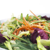 Healthy Salad with Carrots Stock Image