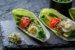 Healthy salad in chicory with egg, sprouts and avocado Royalty Free Stock Images