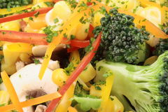 Healthy salad close up Royalty Free Stock Image