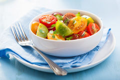 Healthy salad with colorful tomatoes Stock Photos