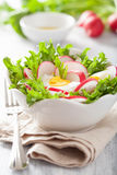 Healthy salad with egg radish and green leaves.  Stock Photo