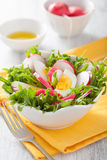Healthy salad with egg radish and green leaves. Healthy salad with eggs radish and green leaves Stock Photo