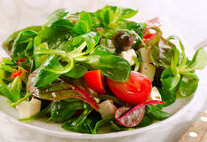 Healthy  Salad with feta cheese Stock Image