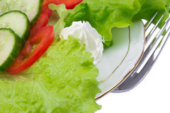 Healthy salad with fresh vegetables Royalty Free Stock Photo