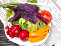 Salads ingredients. Fresh vegetables . royalty free stock image