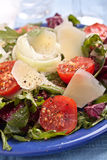 Healthy salad mix with cheese Royalty Free Stock Photos