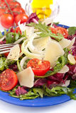 Healthy salad mix with cheese Stock Photography