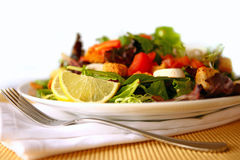Healthy Salad on a Plate Focus on Lemon Stock Images