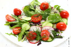 Healthy salad on a plate. Healthy tasty salad with dressing on a plate. Shallow DOF stock image