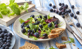 Healthy salad with rocket and blueberries Stock Photography