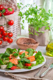 Healthy salad with salmon Royalty Free Stock Image
