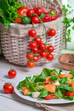 Healthy salad with salmon Royalty Free Stock Photography