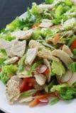 Healthy salad selection Royalty Free Stock Photos