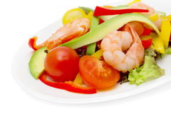 Healthy salad of shrimp Stock Photography