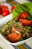 Healthy salad with tomatoes Royalty Free Stock Photos