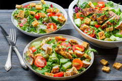 Healthy salads made of fresh vegetables and chicken Royalty Free Stock Photo